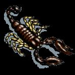 MOSkorpion